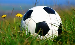 Close-up of a soccer ball in the grass.