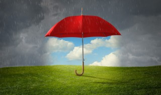 A red umbrella standing up by itself, keeping rain off the grass on a stormy day.