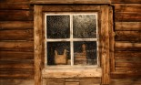 Rustic wooden house and window