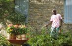 Man watering garden