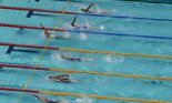 Olympic swimming race