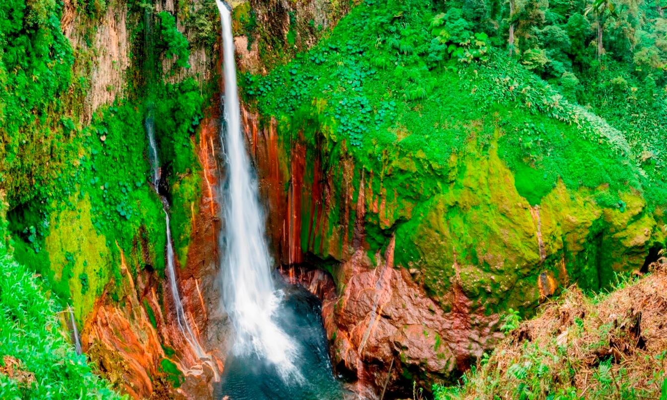 A waterfall plunges 300 ft into the crater of an extinct volcano in a forest