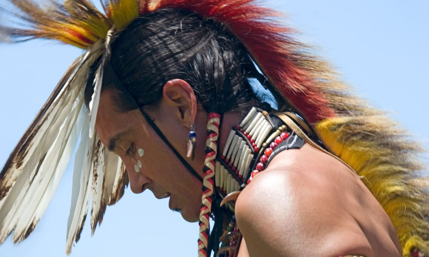 Profile of a Native American wearing a feathered headdress
