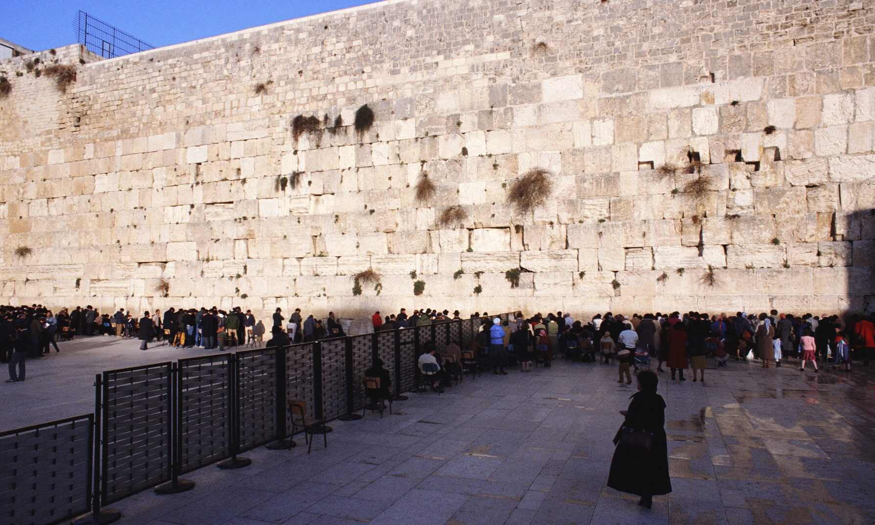 Men and women separated by a fence pray at the Western Wall in Jerusalem