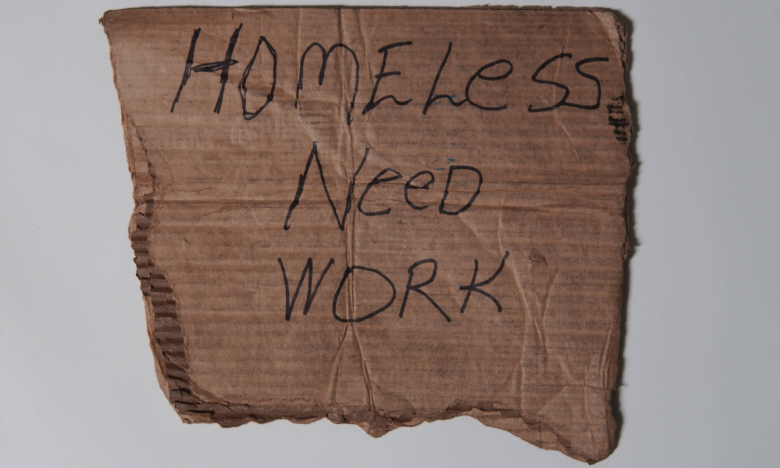 Cardboard sign asking for work