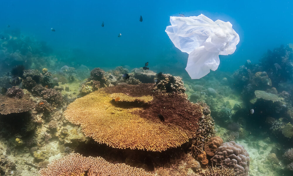 A plastic bag floats over a tropical coral reef creating a hazard to turtles and other marine life