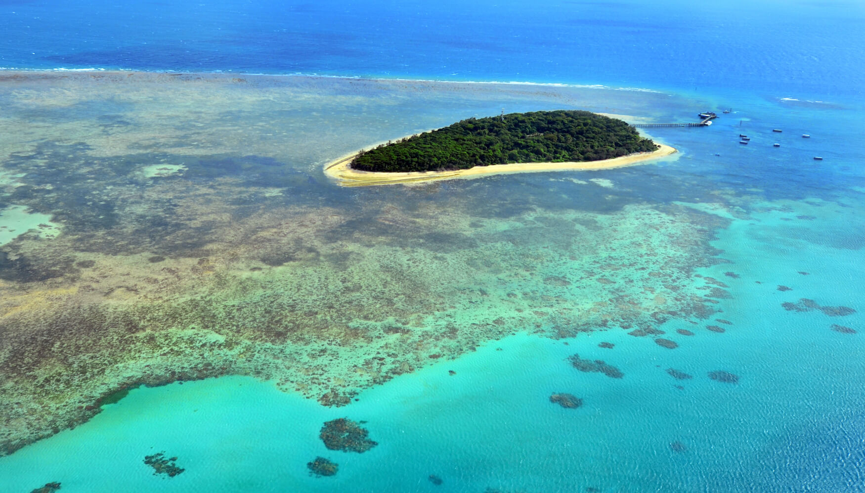 Aerial view of Green Island reef at the Great Barrier Reef near Cairns in Tropical North Queensland, Queensland, Australia.