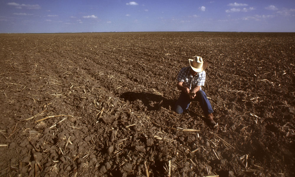 Farmer checking soil in field