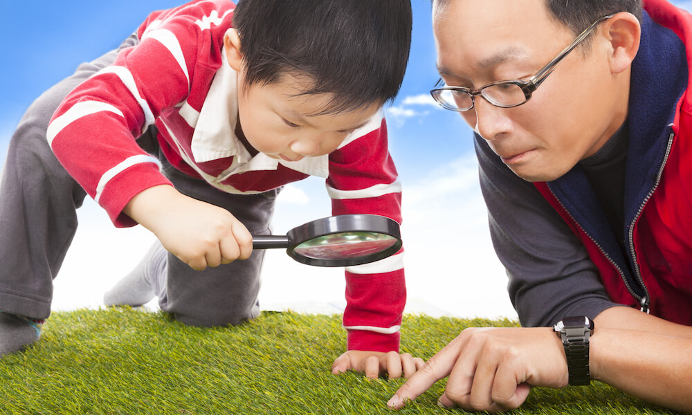 Father and son searching in grass with magnifying glass
