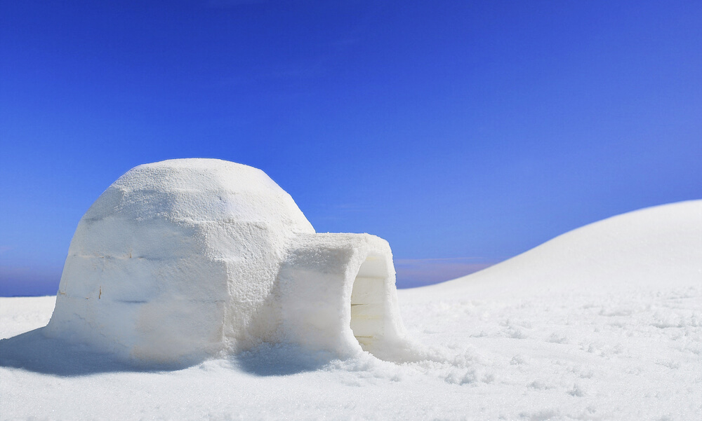 an igloo in the middle of a barren and icy landscape