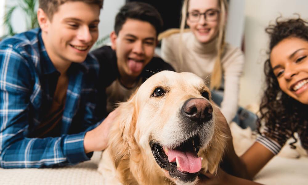 happy teenagers petting dog