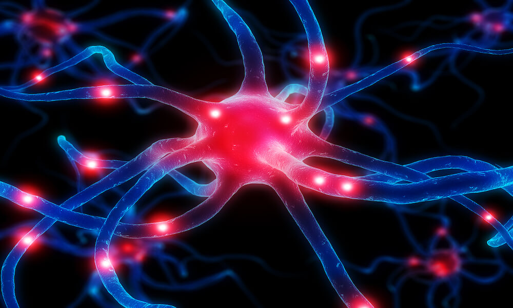 3d rendered close up of an active neurone cell