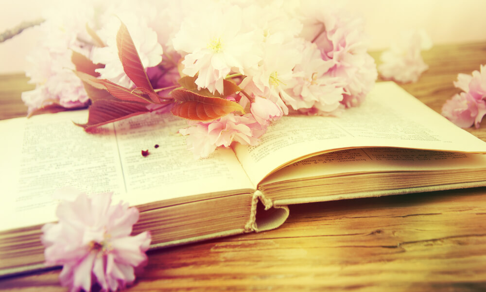 Open vintage book with blossom branch of cherry-tree on wooden table.