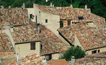 French tiled rooftops