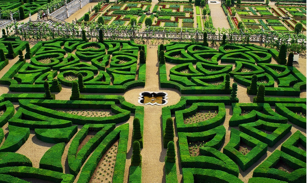 Hedge Maze in Giverny