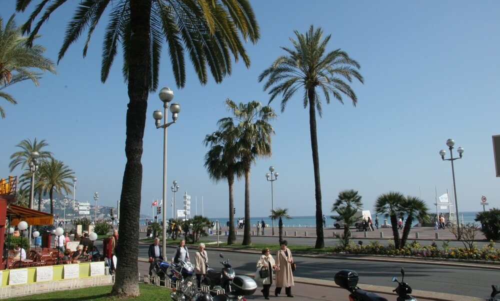 People and palm trees on a street in Nice, France
