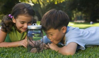 A boy and girl lying on grass in a park, looking at a glass jar holding some leaves and twigs.