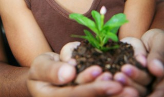 A girl and her mother holding a small flower plant and some soil in their hands.