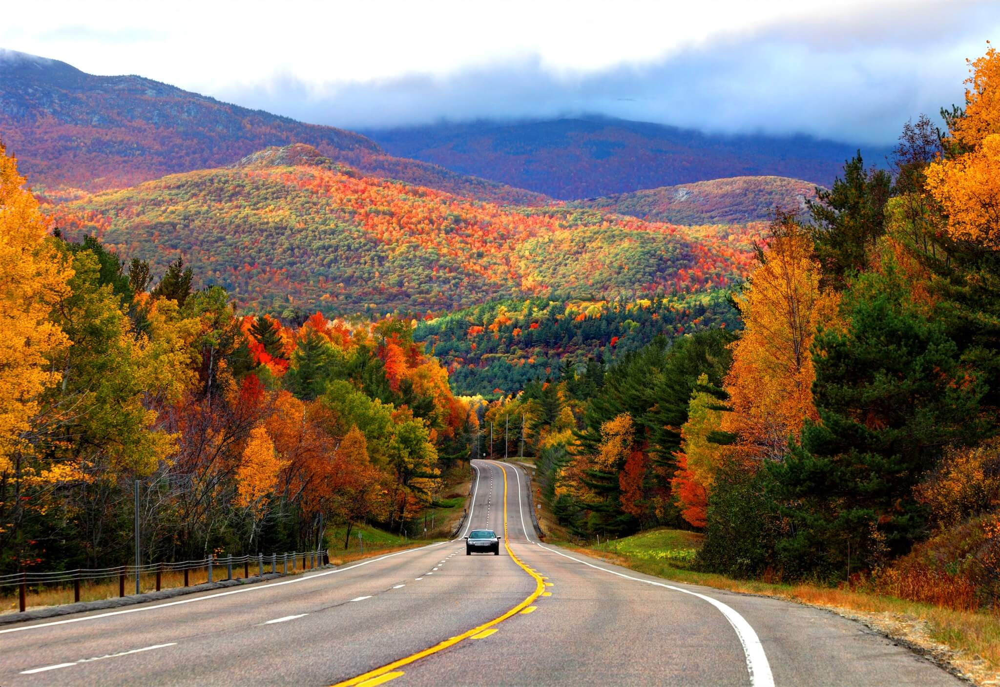 A road lined with trees during fall, when the leaves are changing colors.