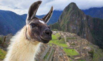 Machu Picchu, Peru, UNESCO World Heritage Site. One of the New Seven Wonders of the World