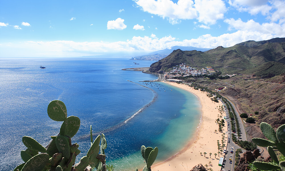 Tropical coastline with beach and mountains, Playa De Las Teresitas, Tenerife, Canary Islands, cactus in foreground